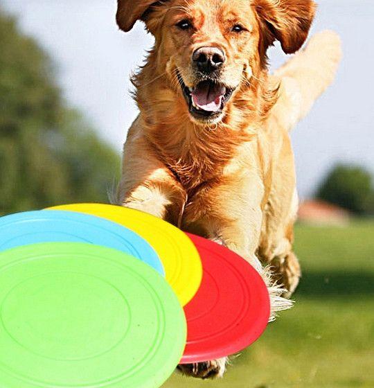 Home Garden Artículos para mascotas Disco volador especial en la competencia de perro de juguete de perro de disco volador de silicona suave platillo volante de entrenamiento de mascotas resistencia a la mordida