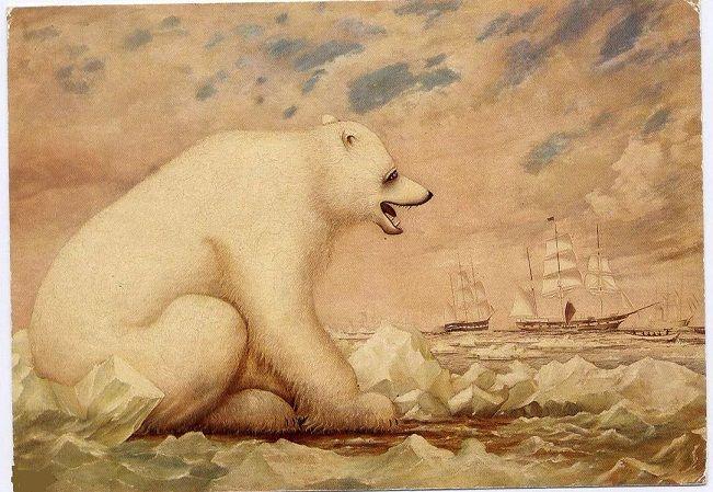 2018 Framed Polar Bear Early Explorers 1889 Sailing Ships Charles S ...