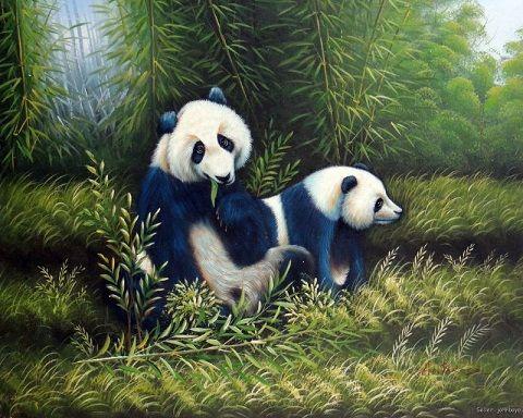 2019 Framed Panda Bear Couple Eating Bamboo Shoots In