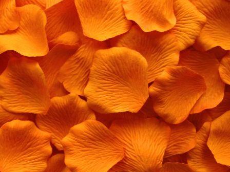 1000 قطع الزهور الحرير روز بتلات الزفاف حزب الجدول النثار الديكور عيد الميلاد ديكور عالية الجودة متعددة الألوان