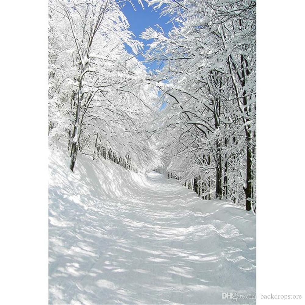 2019 White Snow Covered Road Trees Winter Photography