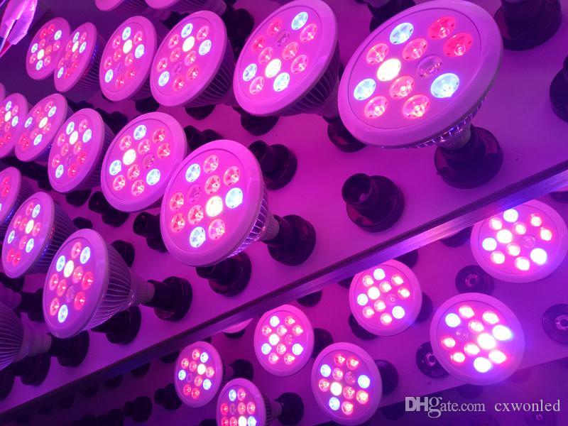 Led büyüyen ışıklar E27 12W 24w LED Tesisi Yüksek güçte Ampul İç Mekan Büyümesi Büyüme CE ROHS sertifikalı ışıklar büyür