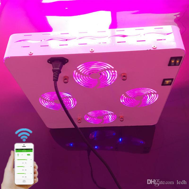 Greenhouse Used COB 1200W LED Plant Grow Light for Veg & Fruit 1200W High  Power LED Plant Grow Light