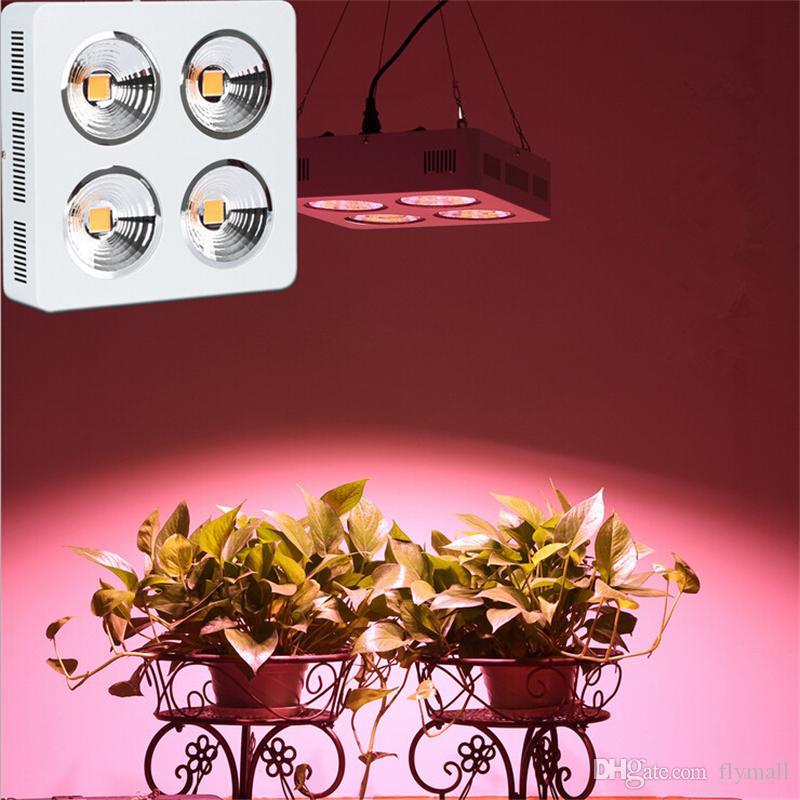 New 200W 400W 800W COB LED Full Spectrum cresce luzes para Estufa interior Veg plantas crescimento e floração hidroponia LED Lâmpada Luz
