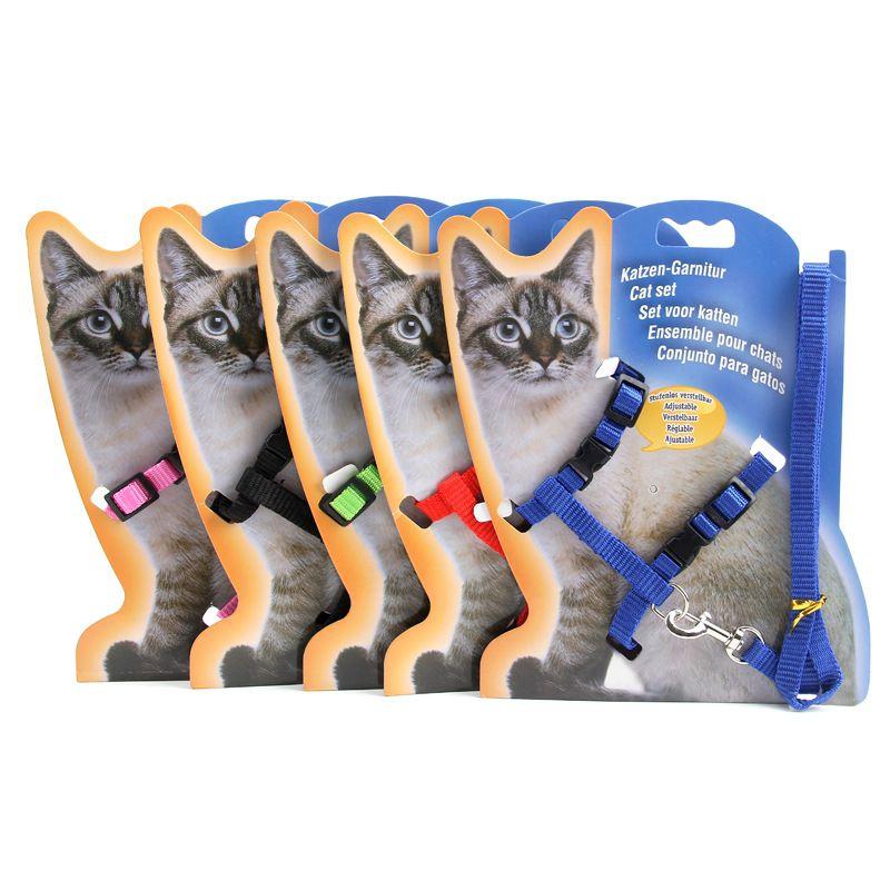 Colorido Magro Coleiras de Gato Resistente Material de Nylon Prático Gatinho Leva Com Fivela de Metal Animais de Estimação Uso Deslizante Trelas Suprimentos 2 45zj Z