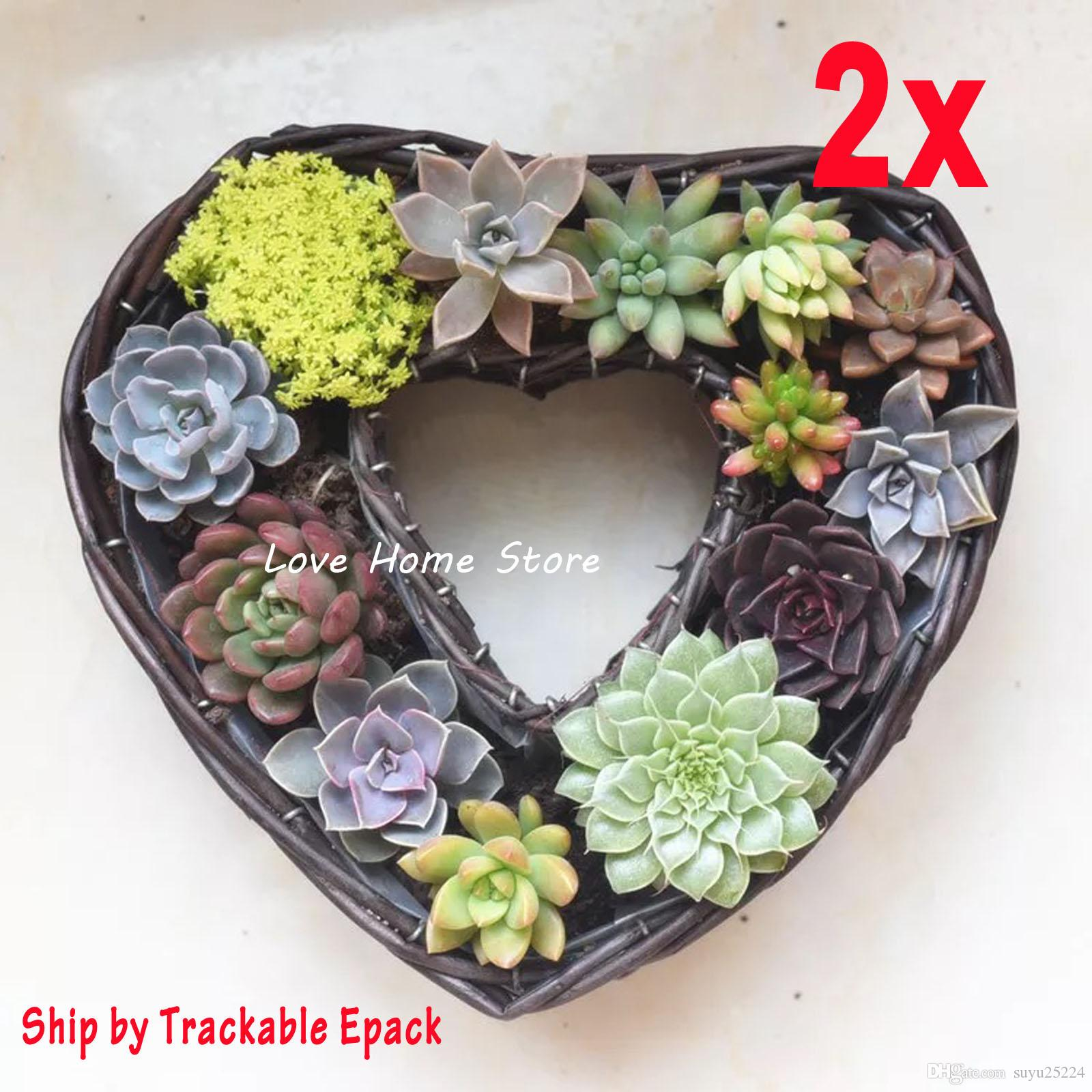 2018 2x Coffee Color Heart Shape Plant