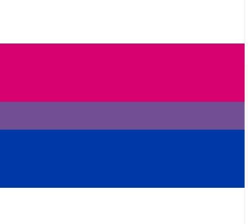 98308e3aaa Compre Frete Grátis Orgulho Bissexual Bandeira LGBT 90   150 Cm Rosa Azul  Bandeira Do Arco Íris Decoração Da Casa Gay Friendly Bandeiras Bandeira  LGBT De ...