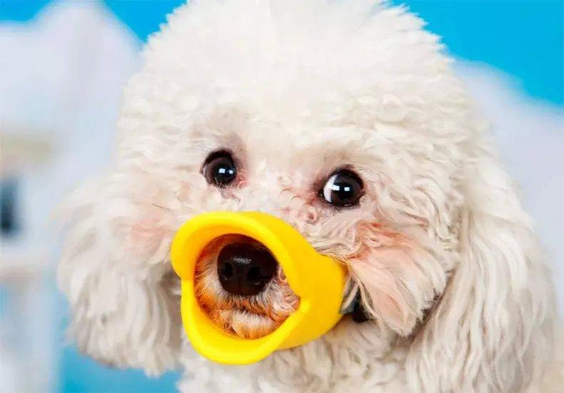 Silica Gel Cartoon Duckbill Dog Muzzle Dog Anti-Biting Mouth Cover Puppy Protective Mask Size S M