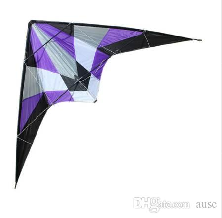 Professional outdoor Fun Sports Storm 1 8 m Delta Dual Line Stunt Kite /  Power Kites Good Flying With Handle And Line