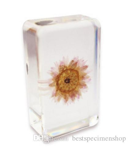 2018 acrylic resin embedded paper daisy flower specimen transparent paperweight block wedding festival gifts teachinglearning science kitstoys from