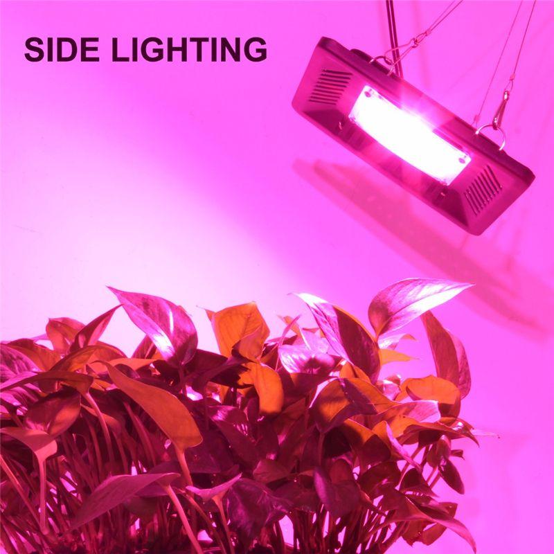 Led wachsen helles volles Spektrum 100W wasserdichtes IP67 COB wachsen LED-Lampe für Pflanzen-Indoor-Wasserkulturgewächshaus im Freien