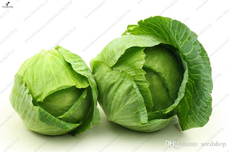 100%True Cabbage Seeds Organic Vegetable Seeds Green Brassica oleracea Easy to Grow High-Quality Vegetable 50seeds/bag