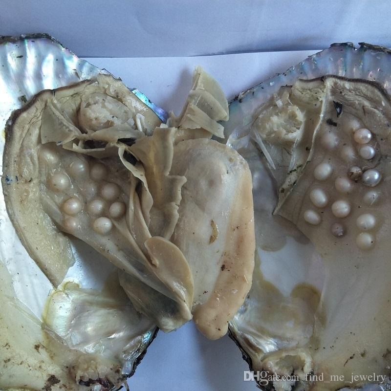 Big Oyster Pearl eight years aquaculture 20-Pearls Individually Vacuum Packed Cultured Fresh Oyster Farm Supply DHL