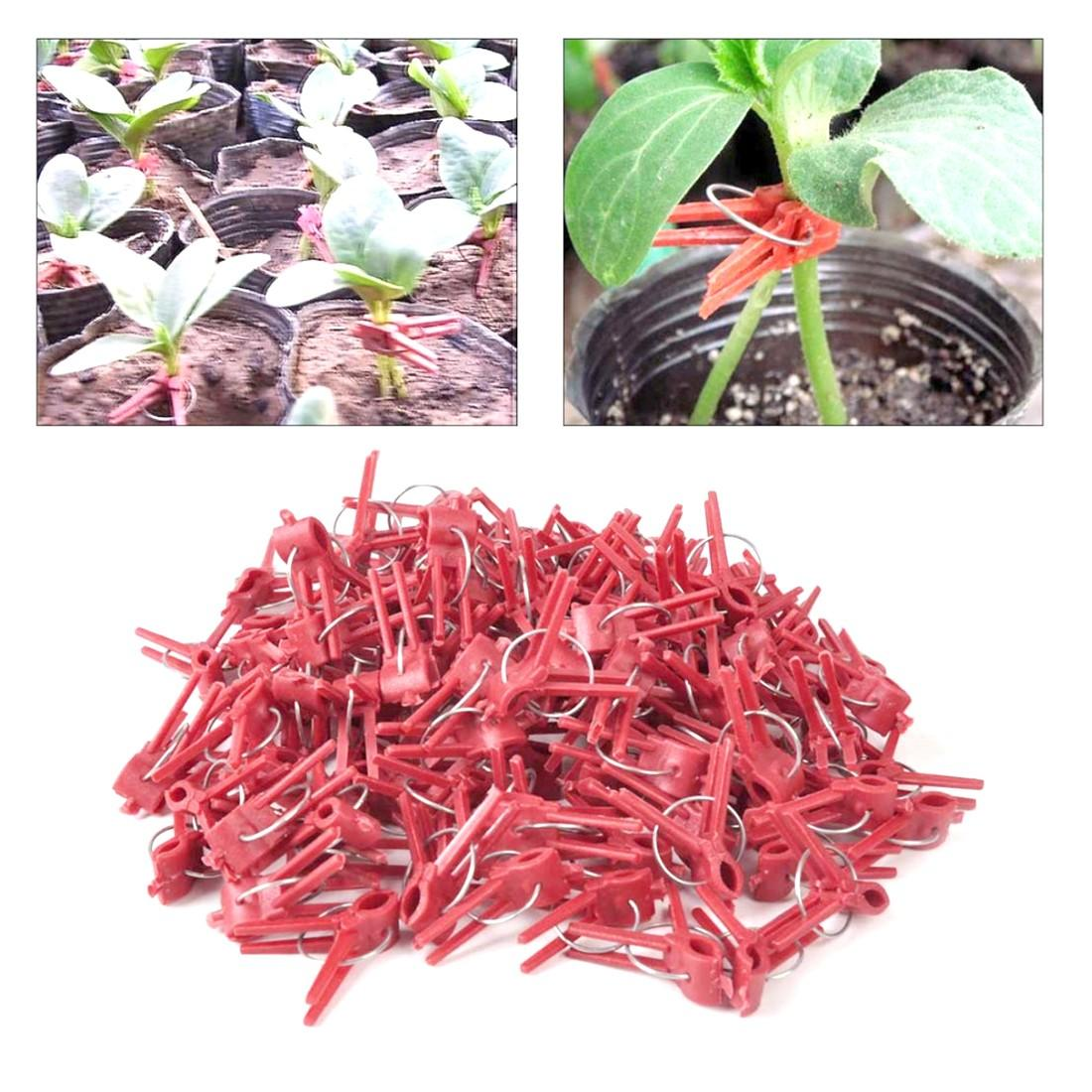 Useful Durable Plastic Grafting Clips Garden Vegetable Flower Tomato Vine Bushes Plants