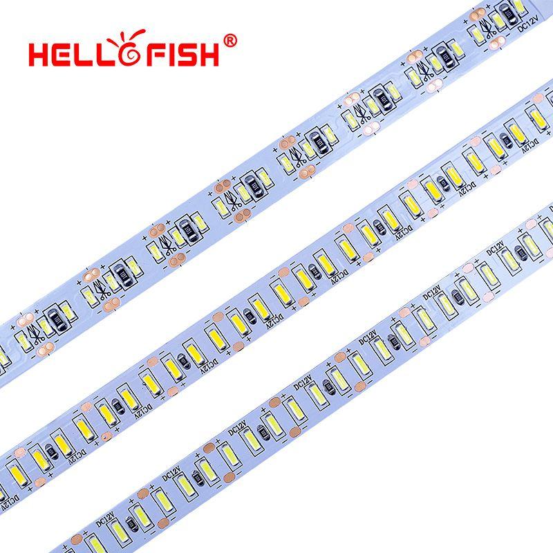 Strange fish strips tape