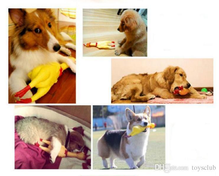 2018 Adore Pet Dog Toys Galo Atrair Filhote de Cachorro Cão e Gato Pet Squeak Brinquedos Gritando Frango De Borracha Pet Brinquedos 3 tamanho