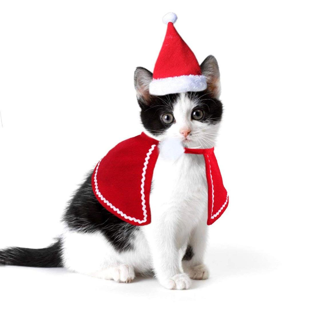 9ff804c524d5f Dog Cat Caps Pet Santa Hat Birthday Scarf And Collar Bow Tie Christmas  Costume For Puppy Kitten Small Cats Dogs Pets Accessories Halloween Cat  Costumes Kids ...