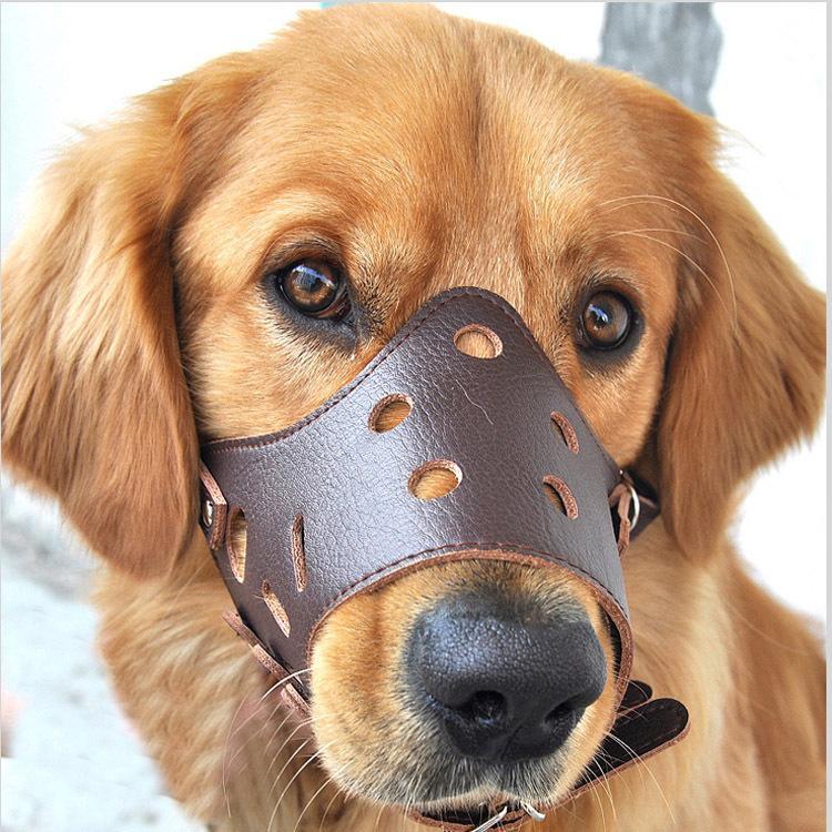 Novo pequeno grande cão de couro focinho ajustável boca mordida parar boca macia focinho coleiras de cachorro ferramenta de transporte da gota