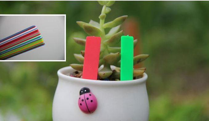 Kreş Ortamı Renkli 100 Adet / grup Plastik Çiçek Etli Bitki Etikel Bahçe Eklemek Sitesi Etiket Süsleme Etiketleri