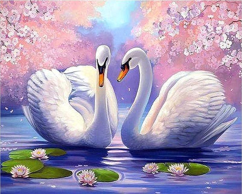 swan-rs-5d-diy-diamond-painting-crystal Swan House Plan on grouse house plan, florida solar house plan, little bear house plan,