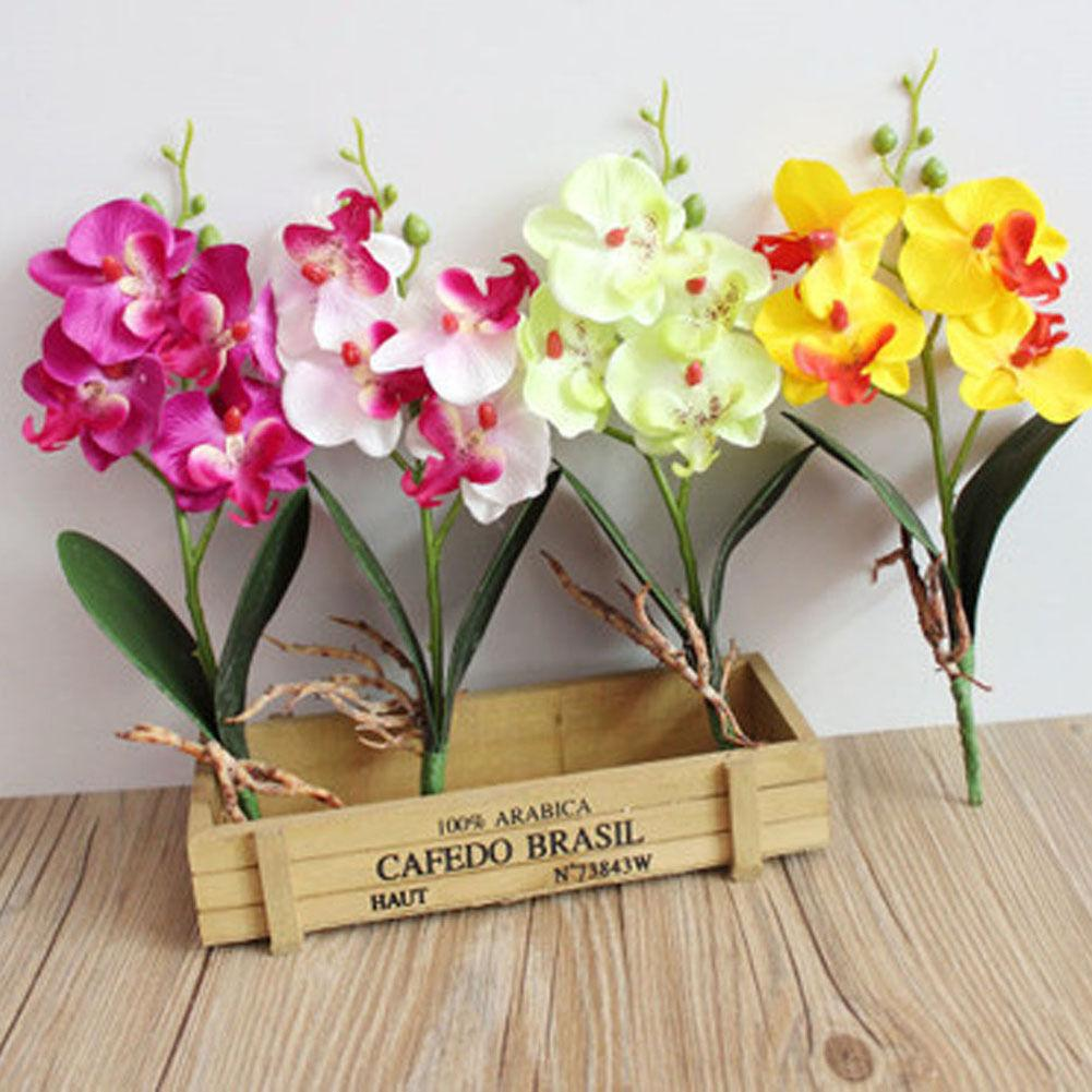2018 artificial imitation vivid image plants and flowers moth orchid 2018 artificial imitation vivid image plants and flowers moth orchid silk flower for arrangement affordable phaleanopsis beauty from meihon 402 dhgate mightylinksfo