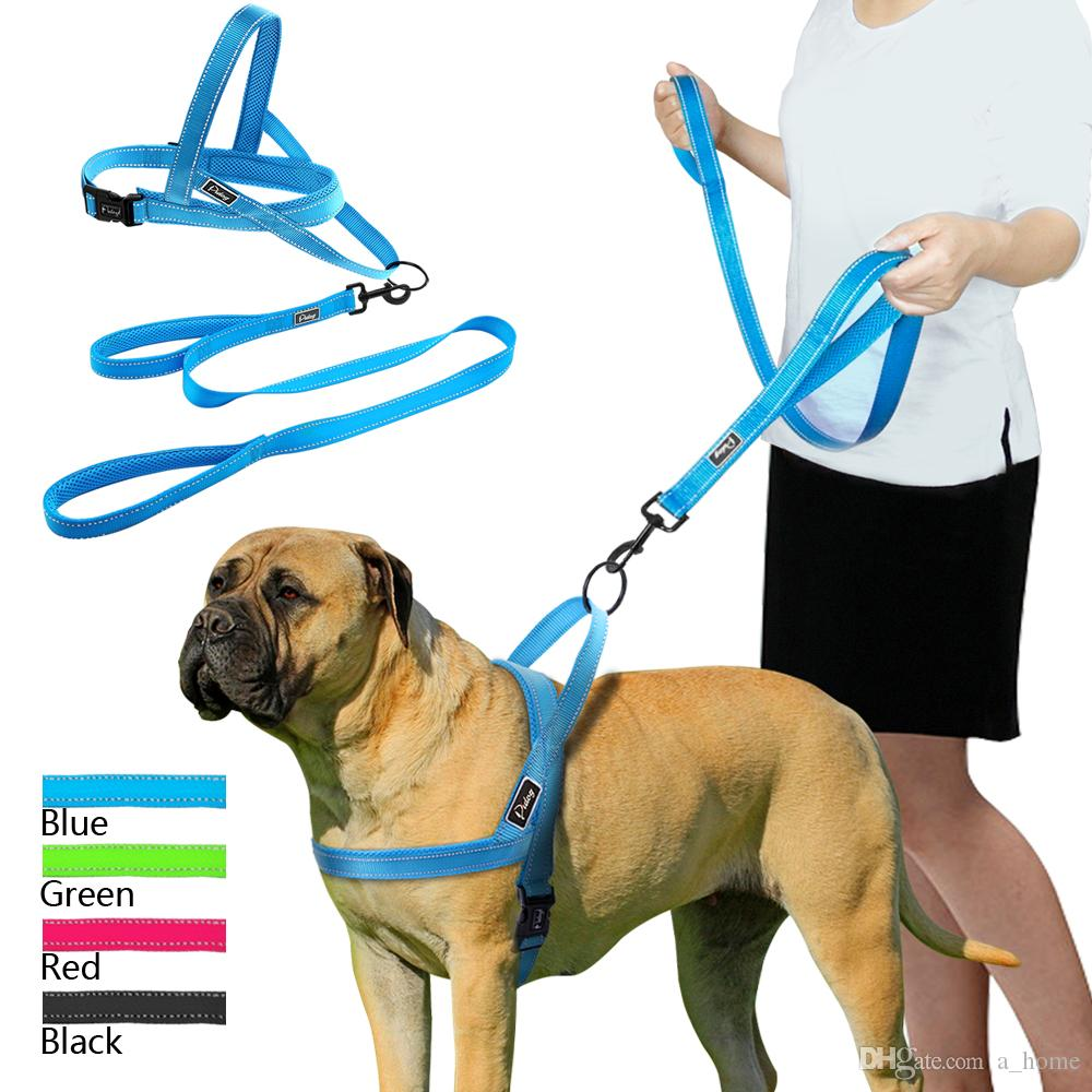 Perfect Fit Dog Harness In Netherlands Wire Center Filesimple Electromechanical Voltage Regulatorpng Wikipedia The Best No Pull Reflective Leash Set Pet Vest Lead For Rh Dhgate Com