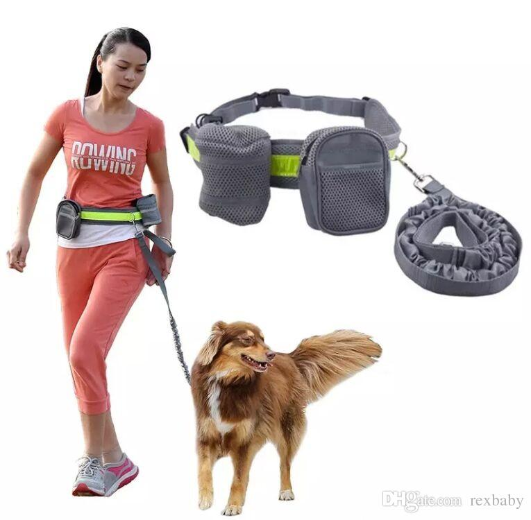 a66238f17ca Elastic belt Running dog leash lead sports jogging walking pet collar rope  hand free waist dog leash set free shipping