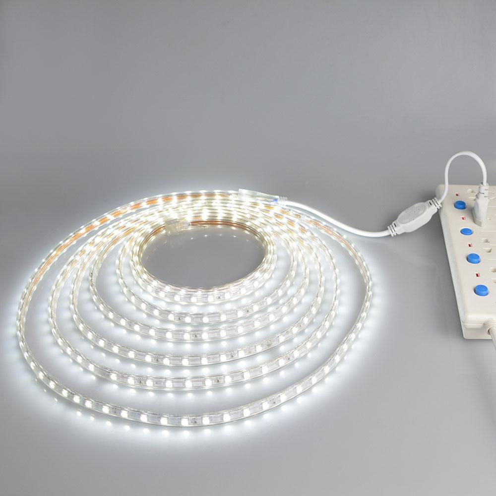 5050 LED Strip Lights AC220V Flexible Tape Lamp Ribbon Waterproof tira led String +EU Power Plug Holiday Christmas Decoration