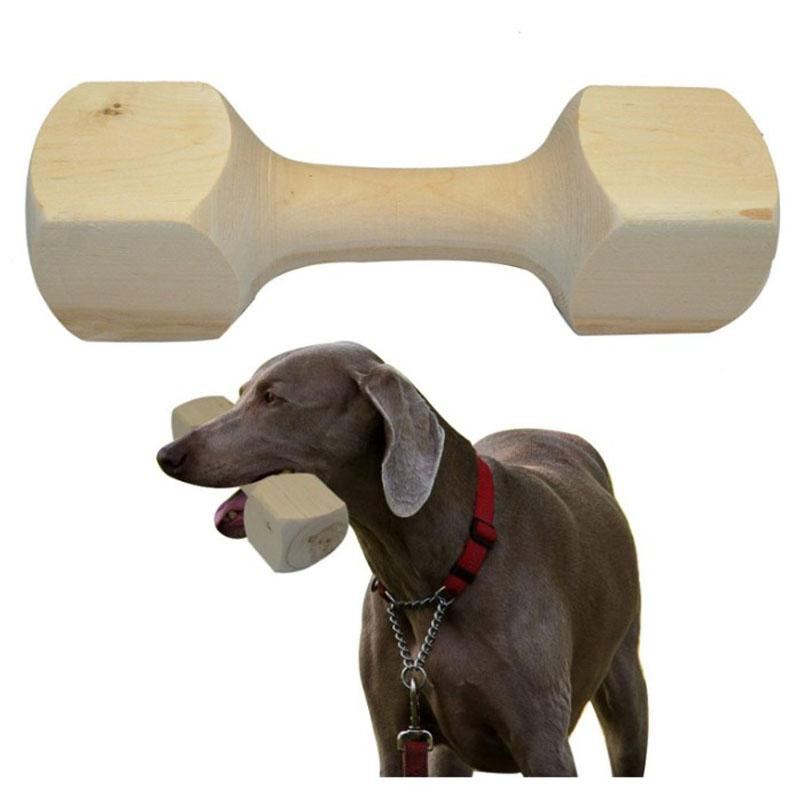 Dog Training Dumbbell