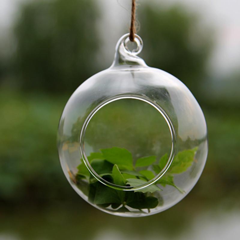 Acheter Verre Terrarium Boule Globe Forme Effacer Vase Suspendu