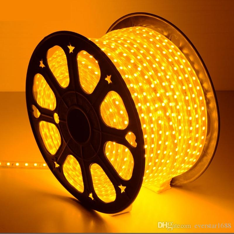 110V 220V Dimmable Led Strips 10M 50M 100M High Voltage SMD 5050 RGB Led Strips Lights Waterproof+IR Remote Control + Power Supply