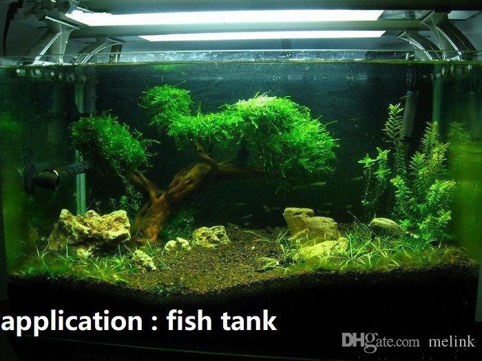 Maille d'acier inoxydable pour la mousse plantes vivantes aquarium aquatique réservoir de poissons de nombreuses tailles petite sans mousse