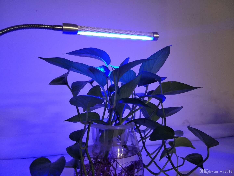 Acquista 5w led a pianta singola con luci progressive piante da