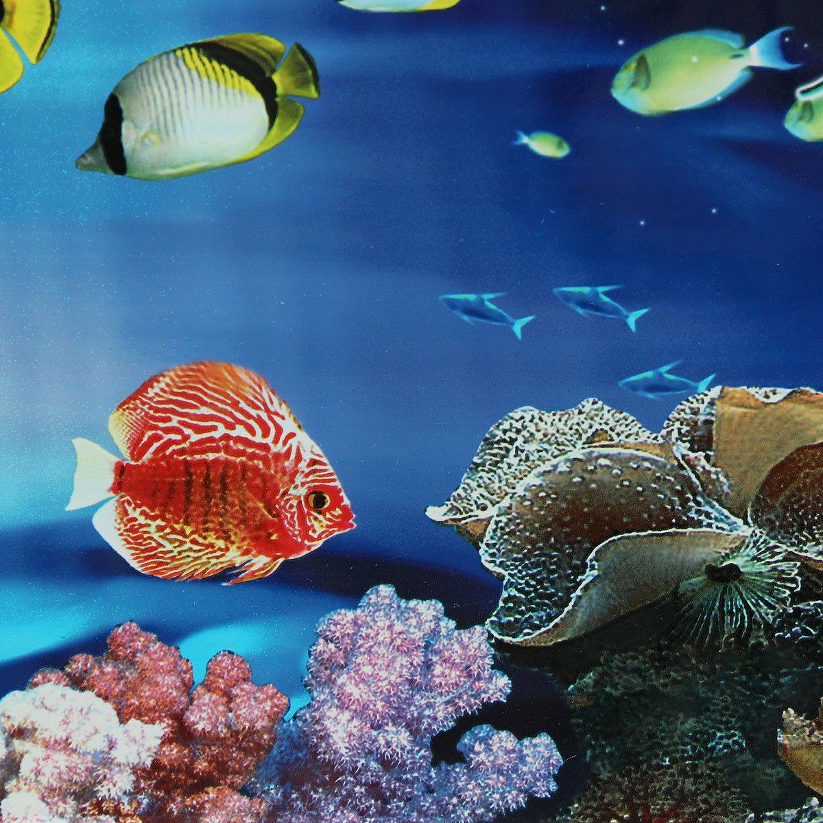 Background Aquarium Ocean Landscape Poster Fish Tank Background Fish