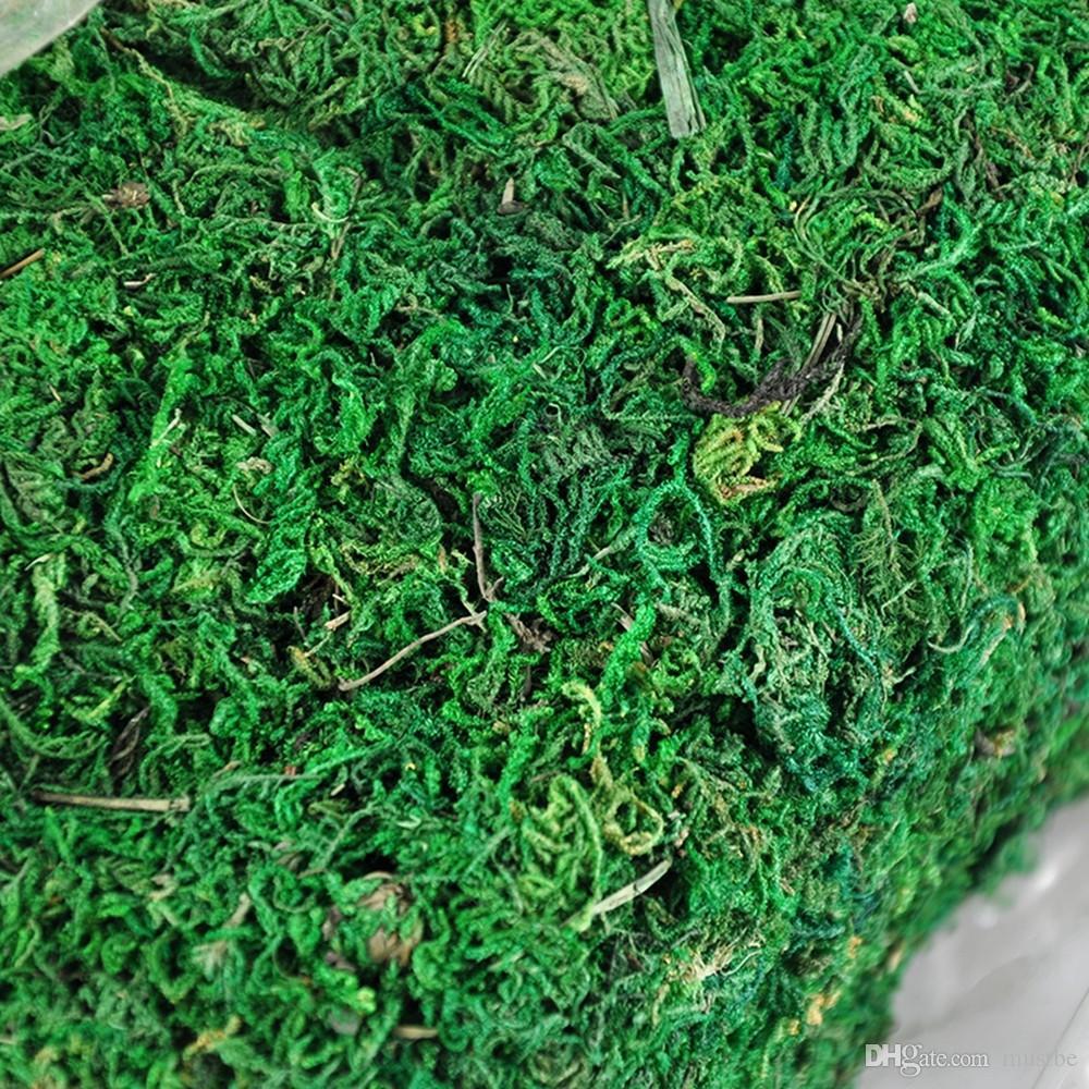 300 g / grup Kuru Tutmak Gerçek Yeşil Moss Dekoratif Bitkiler Vazo Saksı Için Yapay Çim İpek Çiçek Aksesuarları Dekorasyon