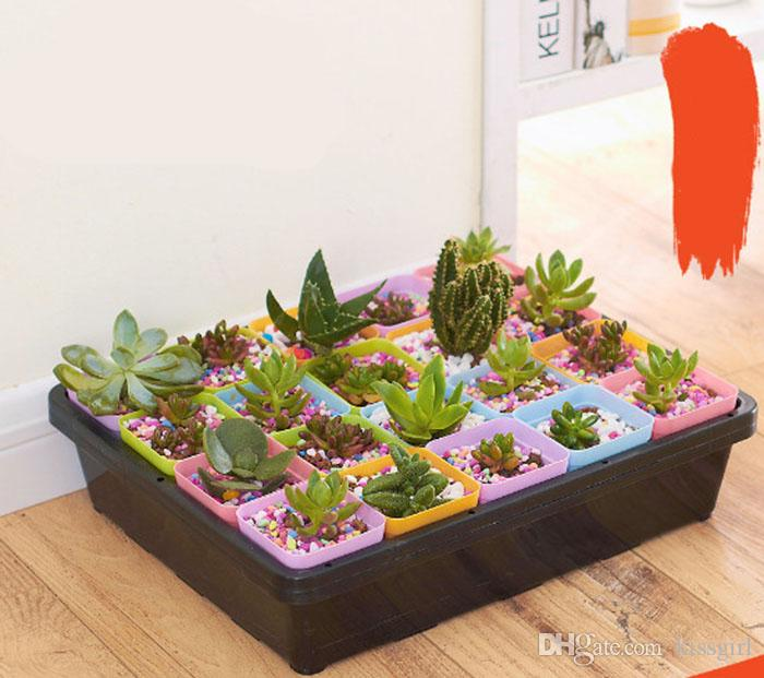 Hot Colorful Bonsai Planters Plastic Table Mini Succulents Plant Pots and Plate Gardening Vase Square Flower Pot