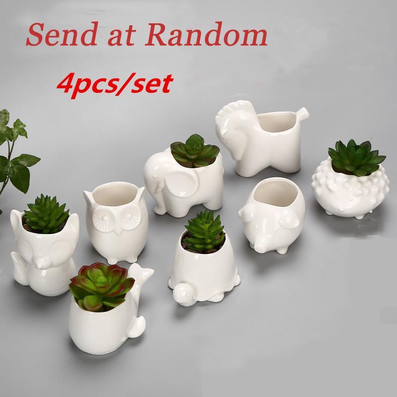 DHgate.com & Small Animal Flower Pot Mini Porcelain Elephant Snail Tortoise Owl Garden Maceteros Ceramic Flowerpot Bonsai Decorative