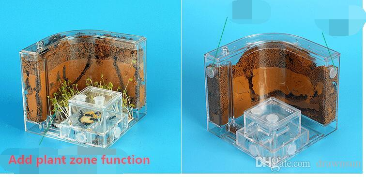 New Transparent Ant House Fill Clay Sand Ants Farm Insect Nest Ecology Mania Home Habitat Professional Castle Maze Ant Villa