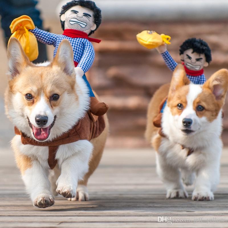 Ücretsiz kargo oyuncak Yaratıcı köpek Giysileri oyuncaklar kişilik Komik Dönüşümü Kovboy şövalye Pet kış giysileri