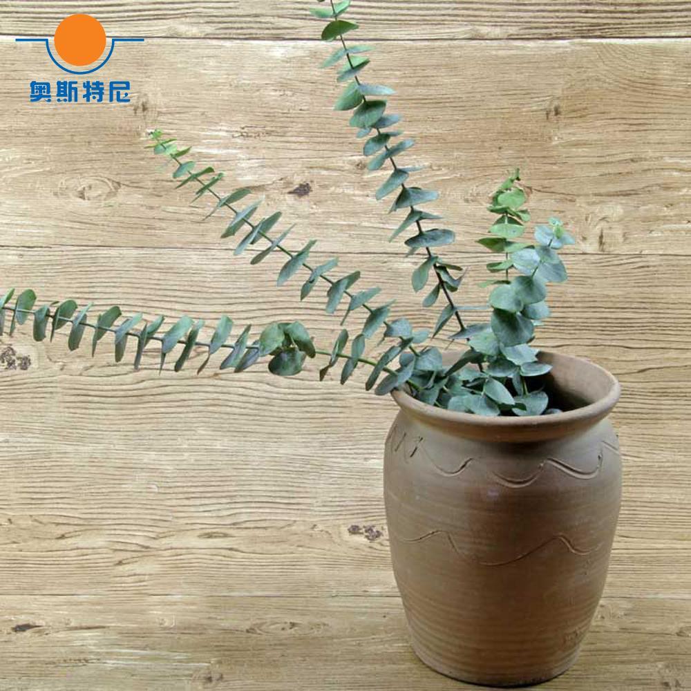acheter séchées bouquets de fleurs naturelles branches d'eucalyptus