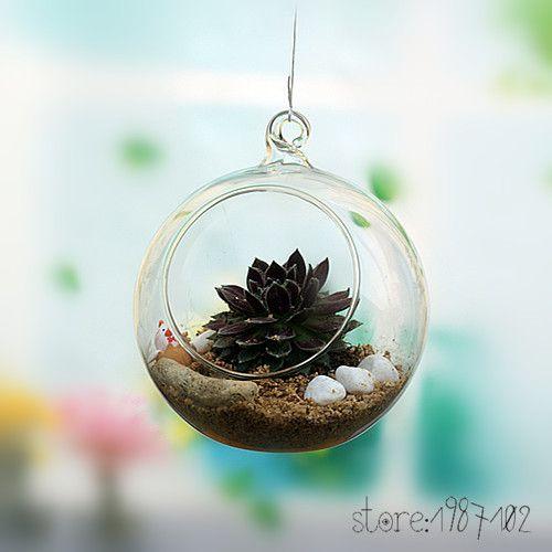 6 8 10cm Hanging Round Glass Air Plant Terrariums Balls Globe Vase
