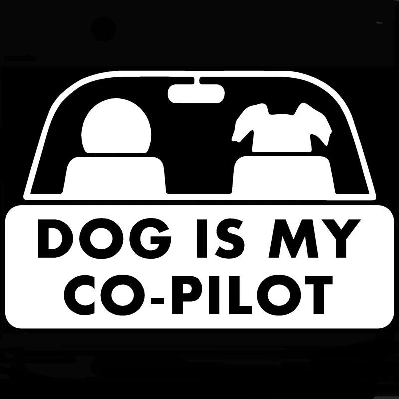 15*10 cm dog is my co-pilot funny pet styling car sticker auto accessories CA386-