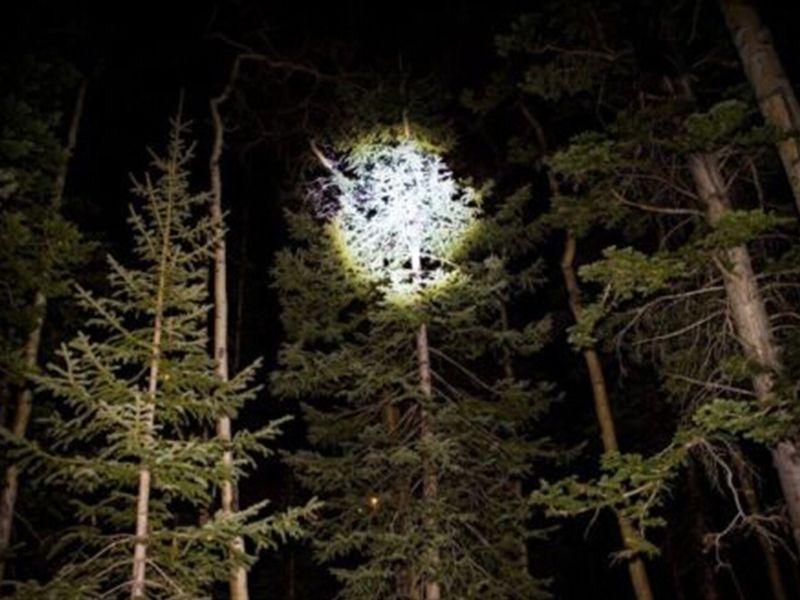 J5 Tactical V1-Pro lampe de poche 300 Lumen Ultra Bright haute qualité Meilleurs outils pour la randonnée Chasse Pêche et Camping