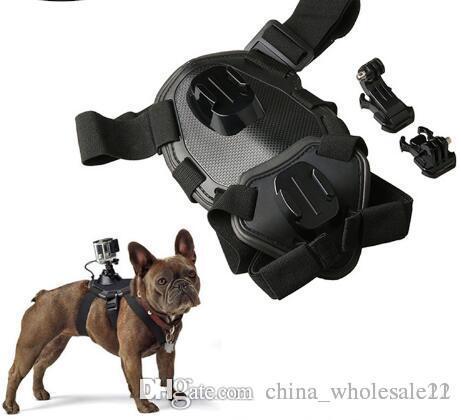 gopro dog harness sport camera elastic band 2019 gopro dog harness sport camera elastic band back chest strap