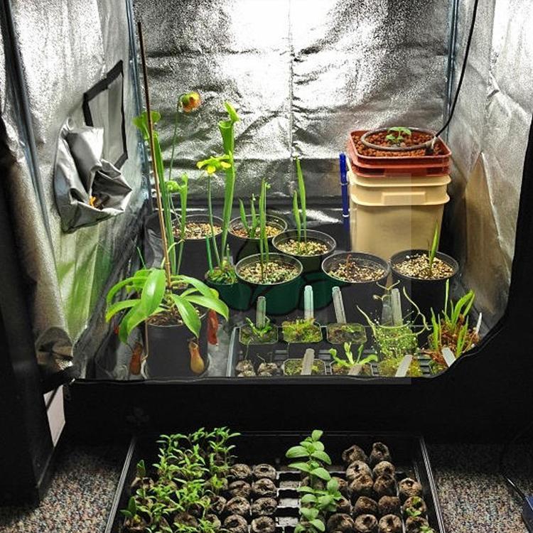 Mylar Reflectante Grow Tent Sala de plantas verdes con ventana de observación y bandeja de piso para flores de interior Cultivo de plantas