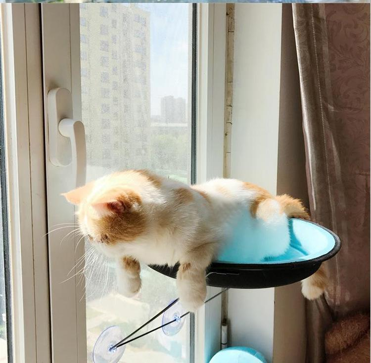 Cat Toys Window Bed Mounted Pot Bed Hammock Perch Cushion Hanging Seat Net  Nest Window Screen Cover Netting Guard House Suction Home Car Feather Cat  Toys ... 647ee4f962