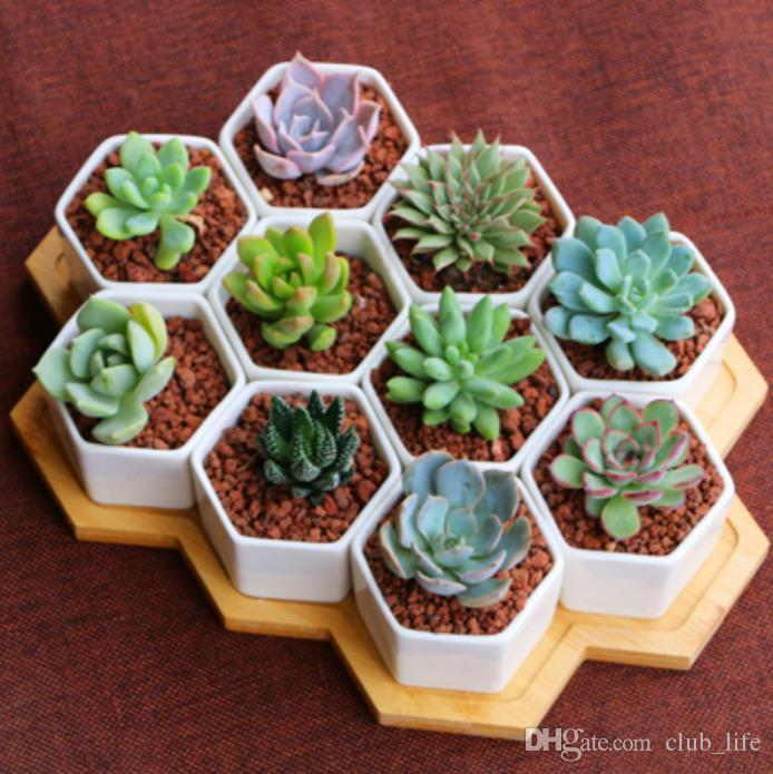 100 stücke keramik bonsai töpfe großhandel mini weiß porzellan blumentöpfe lieferanten für die sukkulente indoor home Kindergarten pflanzer