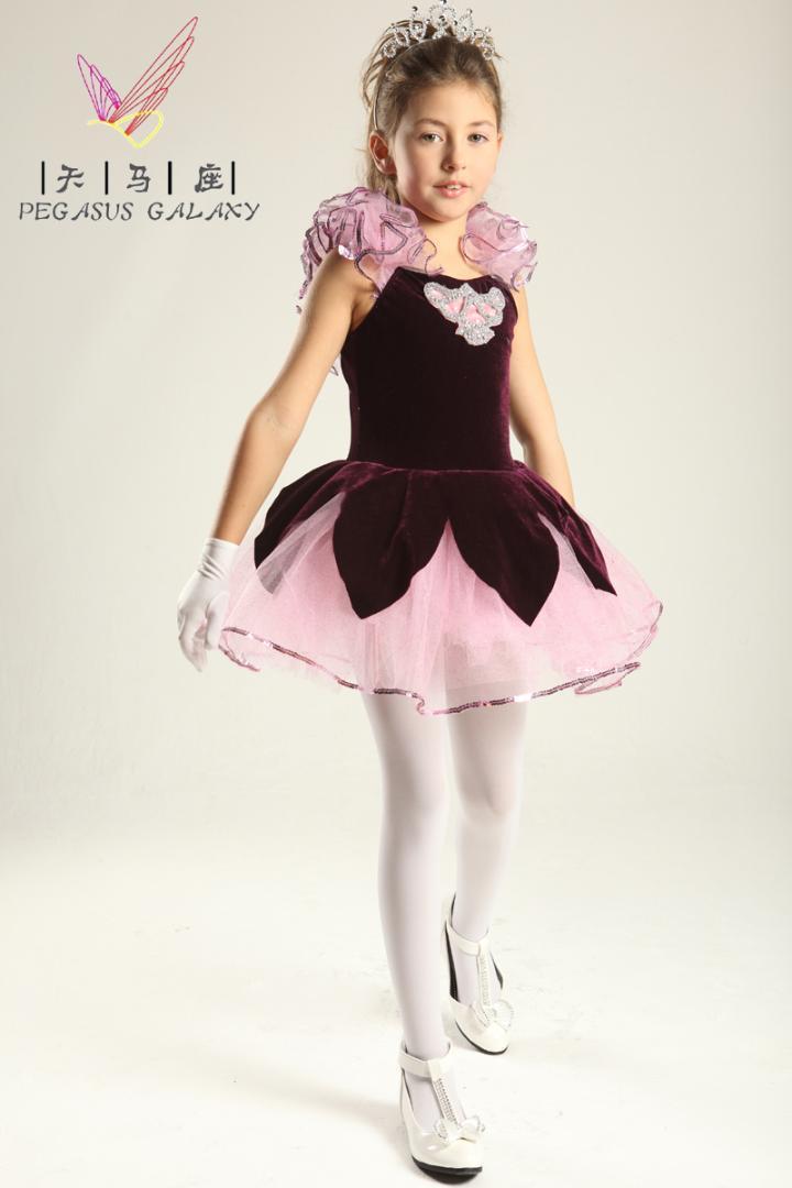 47d9b2b63aeb 2019 Children Professional Ballet Tutus Velvet Ballet Dance Dress ...