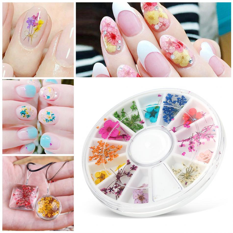 1 Box Natural Dried Flowers Nail Art Decoration Colorful 3d Dry ...