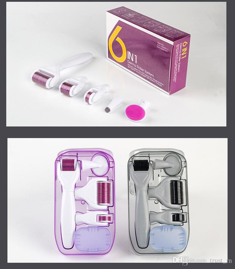 DRS Derma Roller System 6 in 1 Titan Derma Roller Narben Gesichtsbürste Micro Needle Therapy Hautpflege-Kit